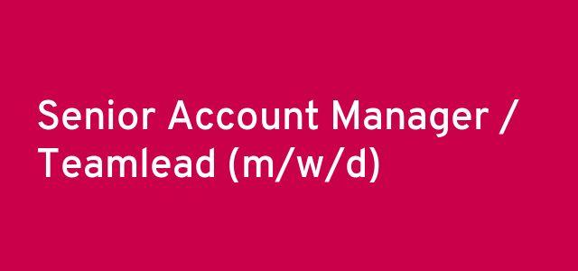 Senior Account Manager / Teamlead (m/w/d)
